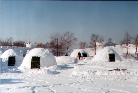在雪屋里,因纽特人还生起炉火来驱寒取暖,他们用石块凿成一个石炉子图片